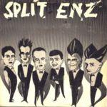 split_enz