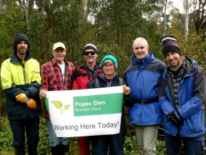 Peter (Bushcare Officer), Bill, Alan (VolunteerCoordinator), Meredith, Paul & Nick