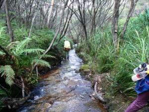 PG Creek 1 Remote 2015 w