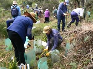 F Volunteers Planting w