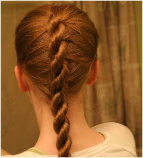 Special Single French Twist Braid Back View: School Hairstyles for Girls