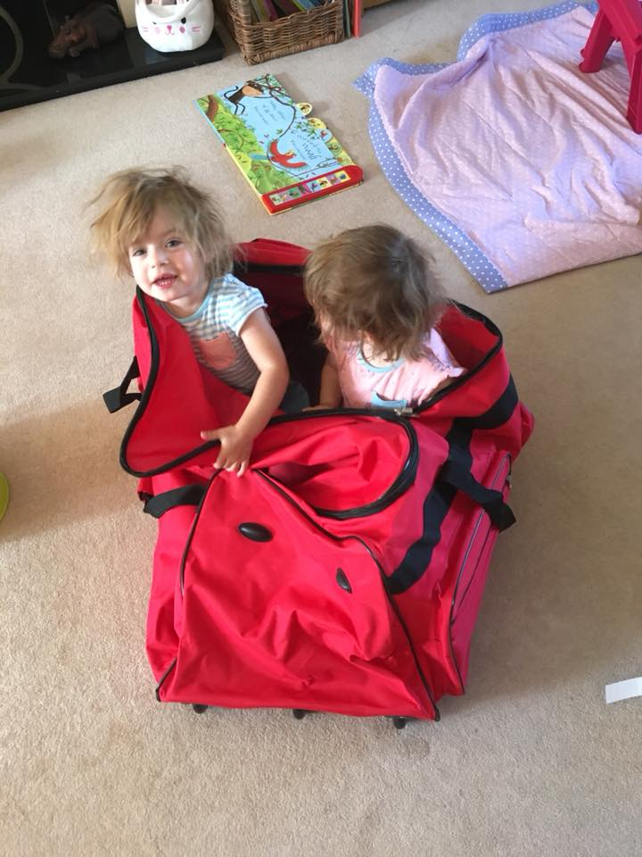 twins playing in a travel bag