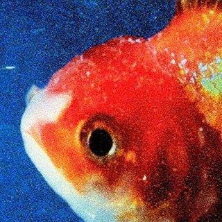 Big Fish (c) Digital Distribution Palestinian Territory Occupied