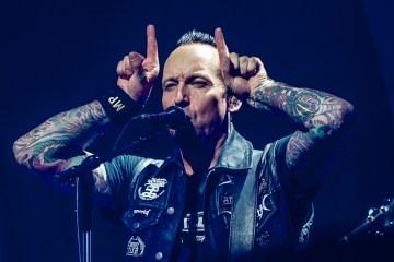 Volbeat, Boxen
