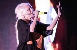 Die Antwoord, Heartland Festival, Greenfield Stage