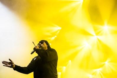 Cypress Hill, Roskilde Festival, RF19, Arena