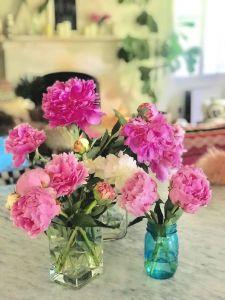 #peonies #favorites #flowers | Poplolly co.