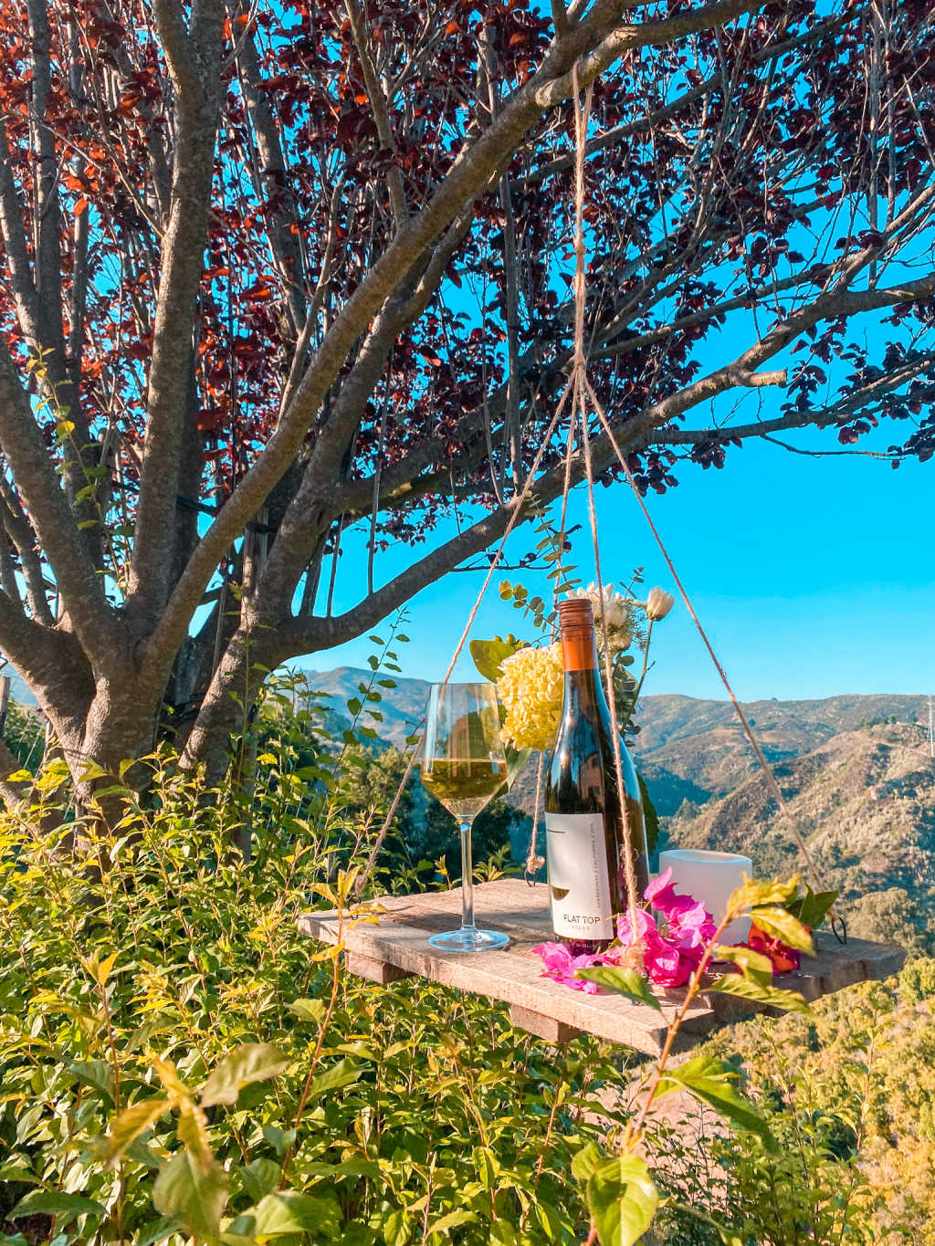 flat top chardonnay hanging from a swing on tree with mountains in the background | Poplolly co