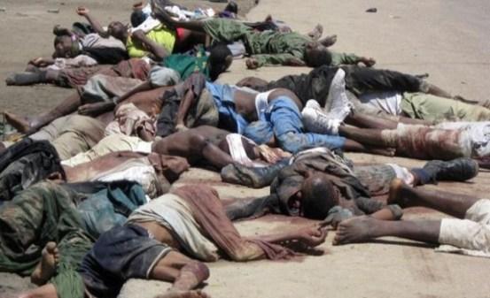 https://i1.wp.com/popoffquotidiano.it/wp-content/uploads/2015/01/vittime-dellattacco-di-Boko-Haram-a-Baga.jpg?resize=553%2C337