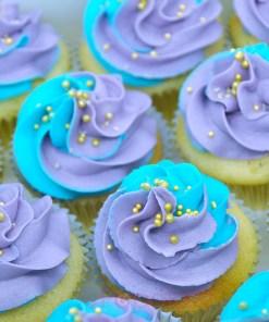 purple aqua cupcake