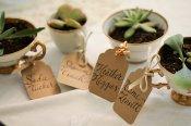 succulents-in-teacups-escort-cards