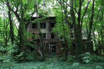 abandoned-island-new-york-city-north-brother-island-3