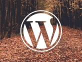 Wordpress with PoppyHost