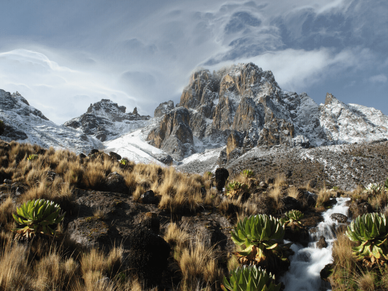 Mt Kenya, summited by the women-let expedition of Naretoi