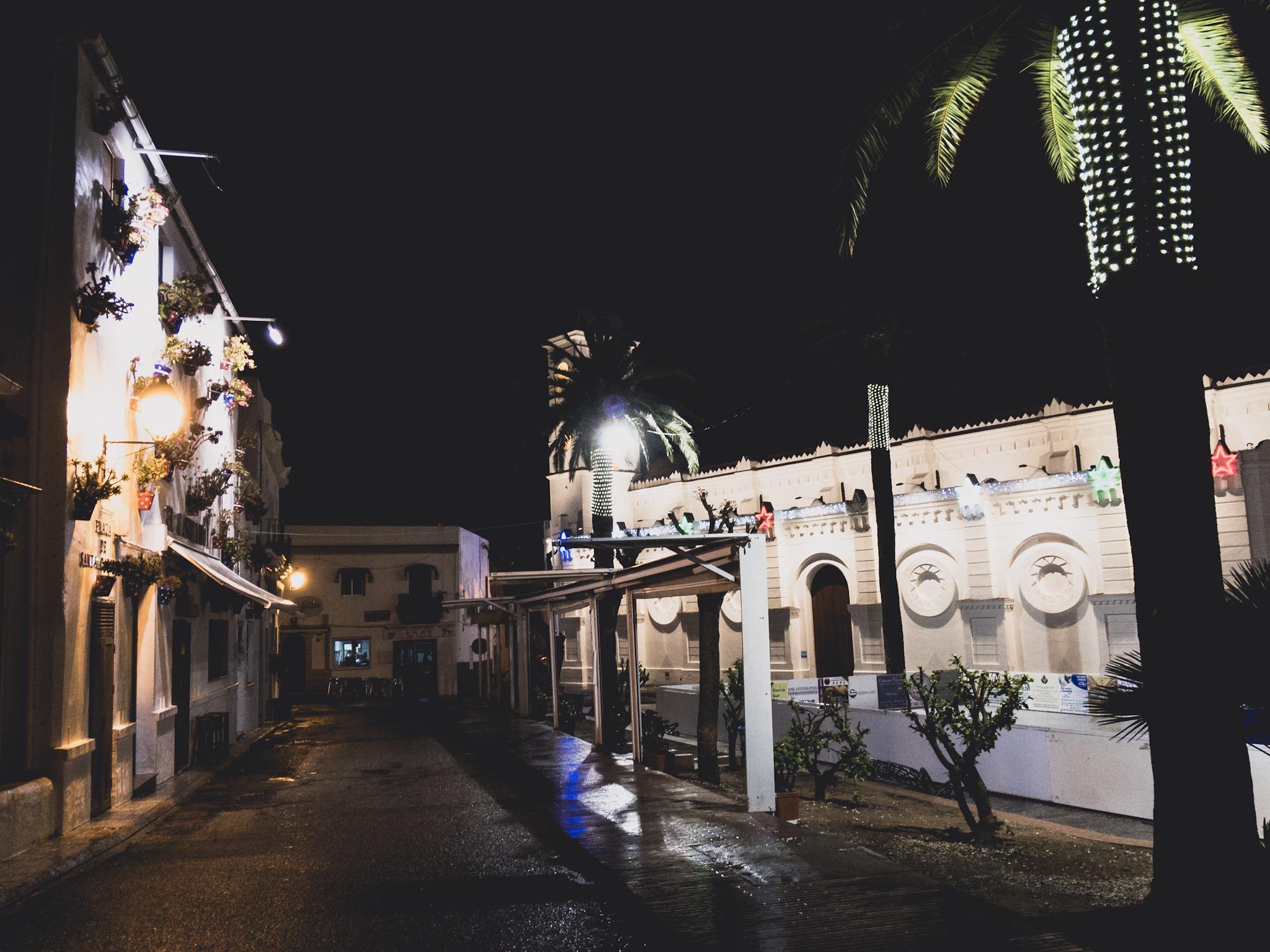 Conil nocą - świąteczne palmy