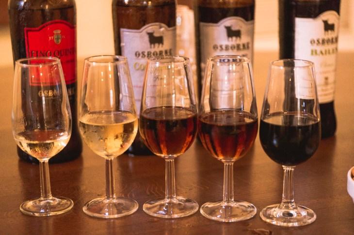 Bodega Osborne - degustacja sherry, Jerez de la Frontera, Hiszpania, Andaluzja