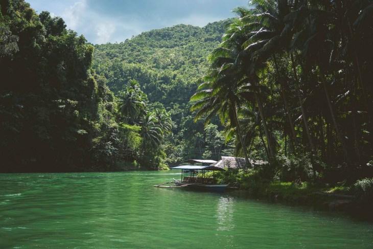 soczysta zieleń natury, oto esencja Boholu