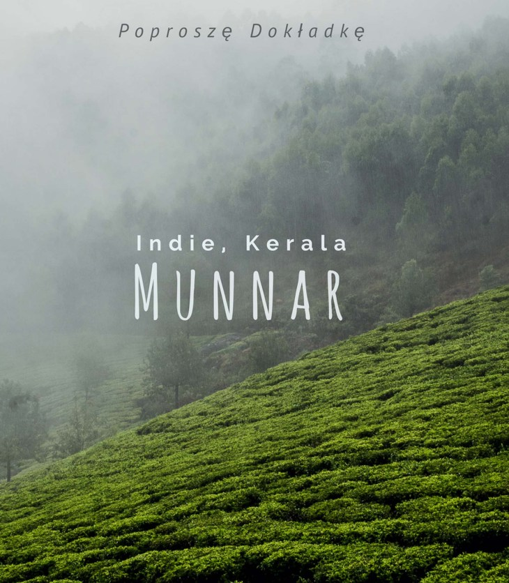 Indie, Kerala, Munnar plantacje herbaty