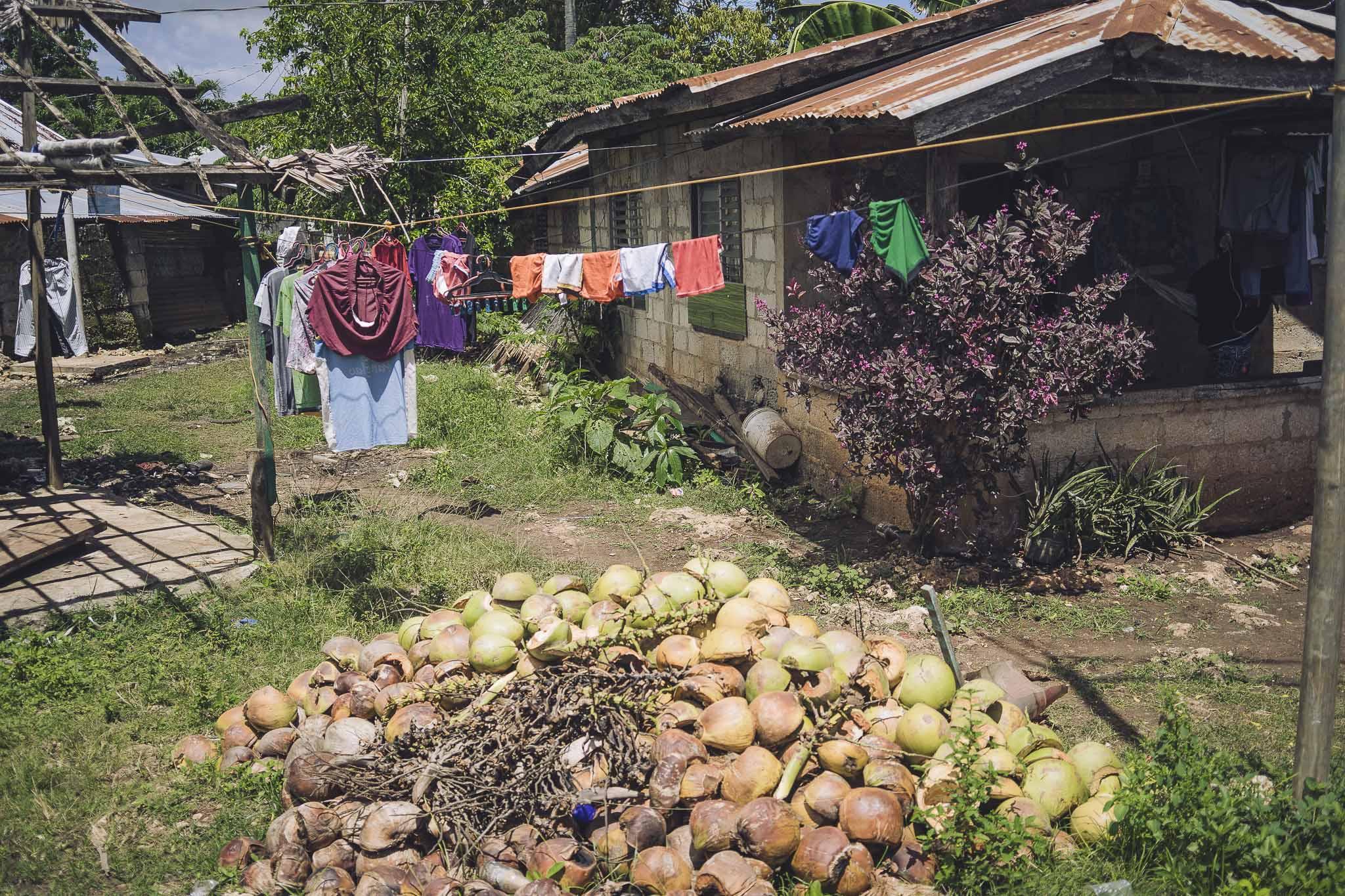 Typowy wiejski, kokosowy widoczek