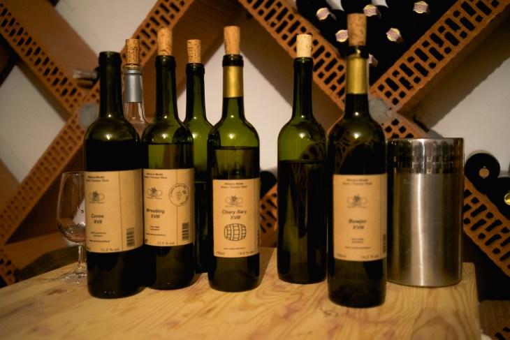 polskie winnice - winnica modła