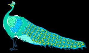 popfugl