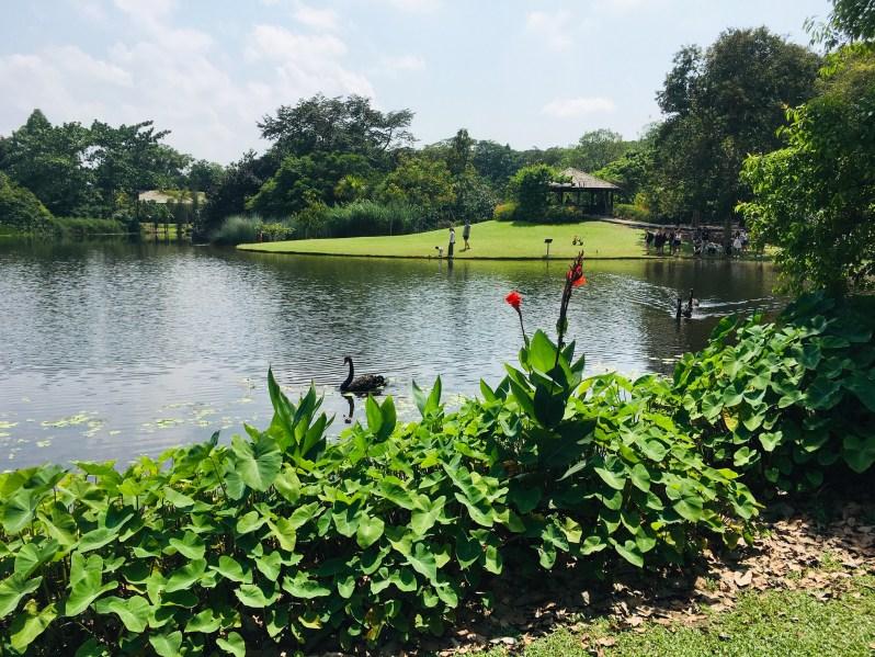 PopsicleSociety_Singapore Botanic Garden1