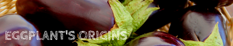 Eggplants Origins_Popsicle Society