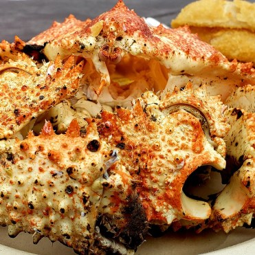 Rock crab California_Popsicle Society