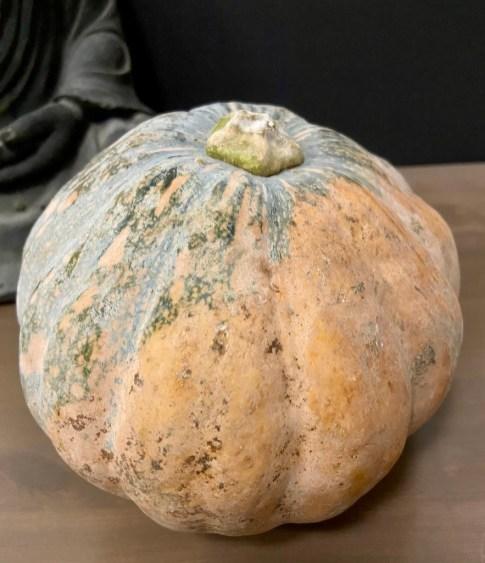 PopsicleSociety-velvety pumpkin cream_5056