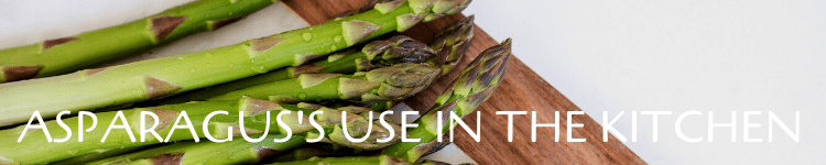 Asparagus recipes_Popsicle Society
