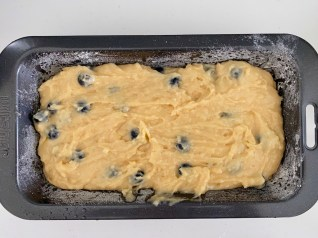 PopsicleSociety-Blueberries, coconut and yogurt cake_7408D
