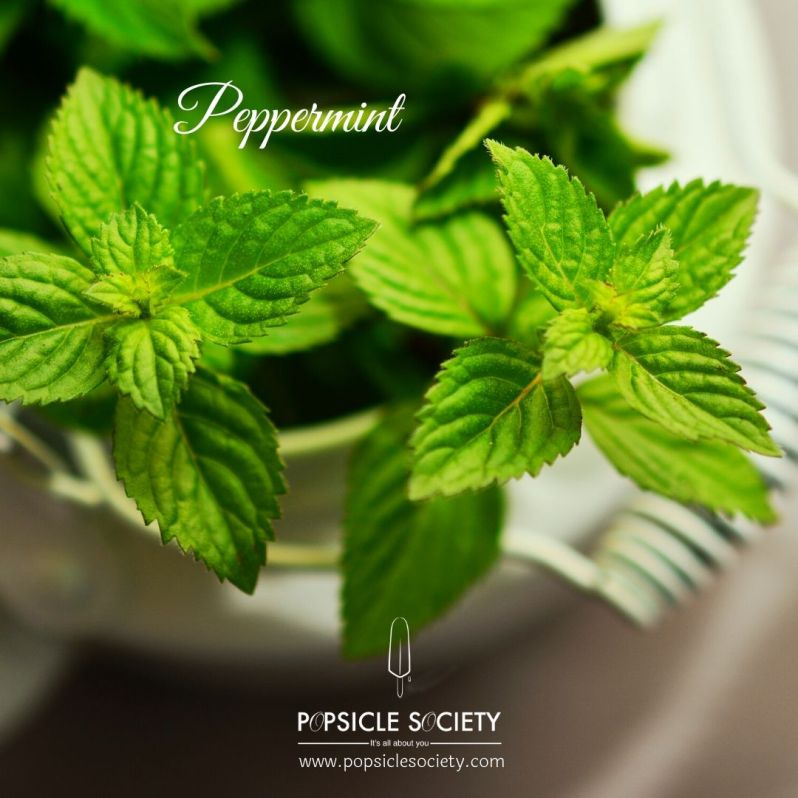 Peppermint_Popsicle Society