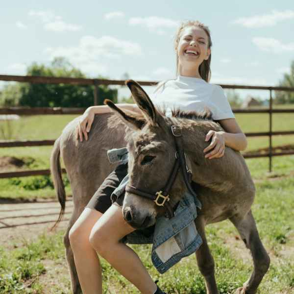 woman in white t shirt riding brown horse