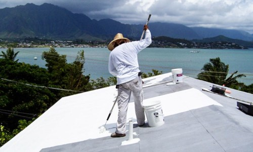 3_the-white-roof-project