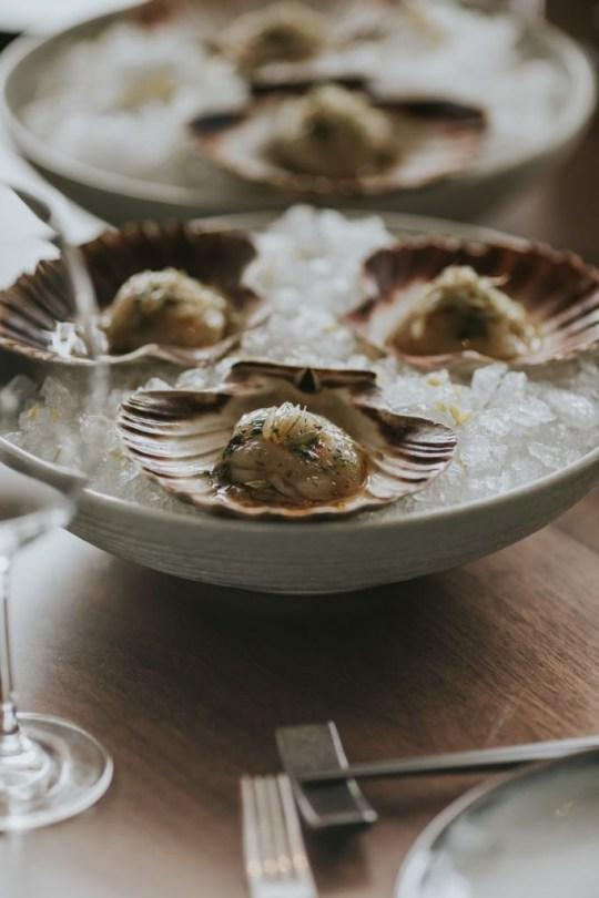 Hokkaido Scallop & Oyster Ceviche