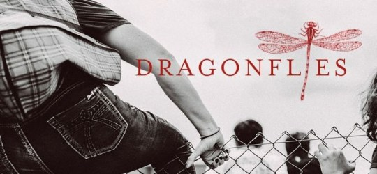 dragonflies DR-Preview-Banner1