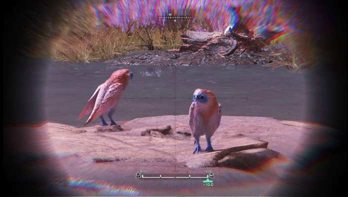 MHW pets: Blissbill | Sausage Roll