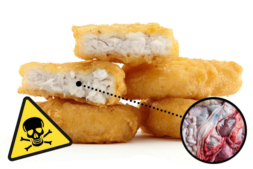 Ten Foods That Are Bad and You Should Never Eat - McNuggets