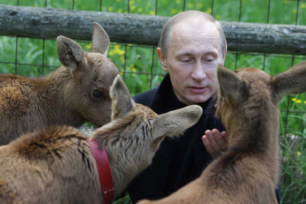 10+ Times Vladimir Putin Looked Sweeter Than You