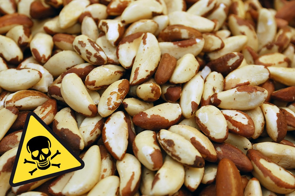 Ten Foods That Are Bad and You Should Never Eat - Brazil Nuts