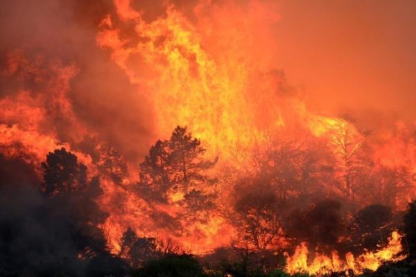 Climate Change Caused Drought Resulting In Massive Fires ...