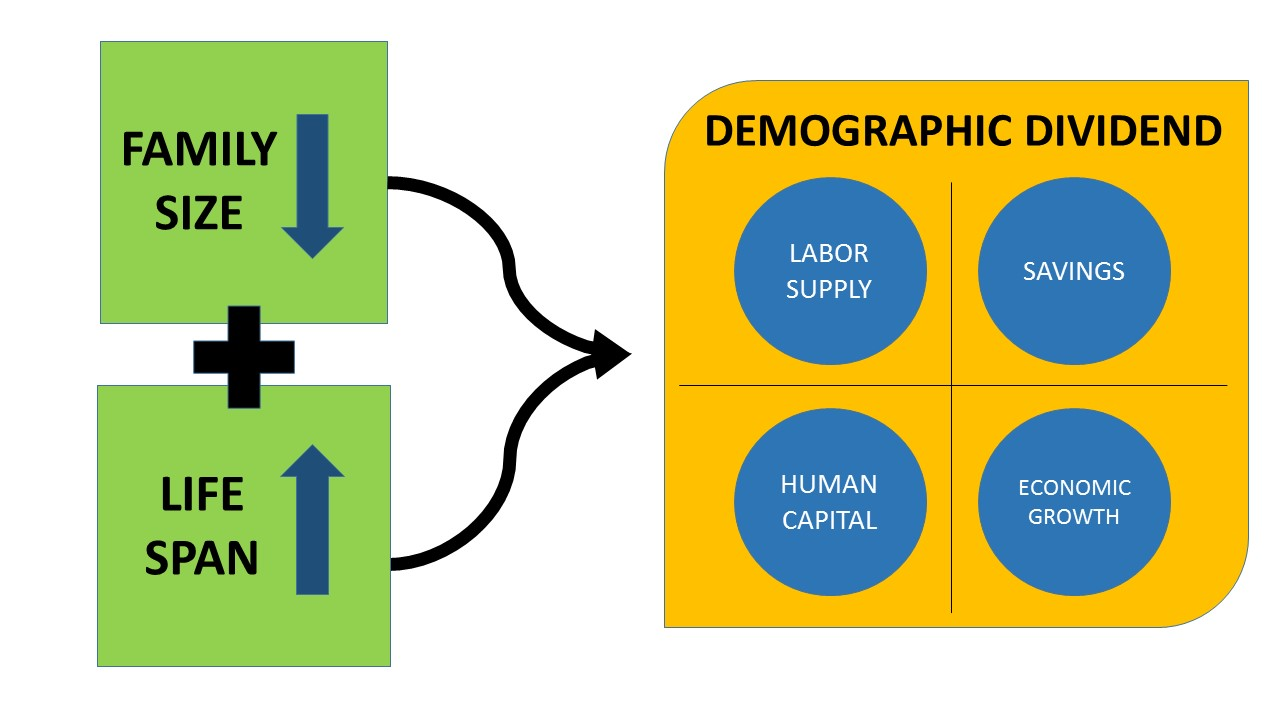 Image result for demographic dividend