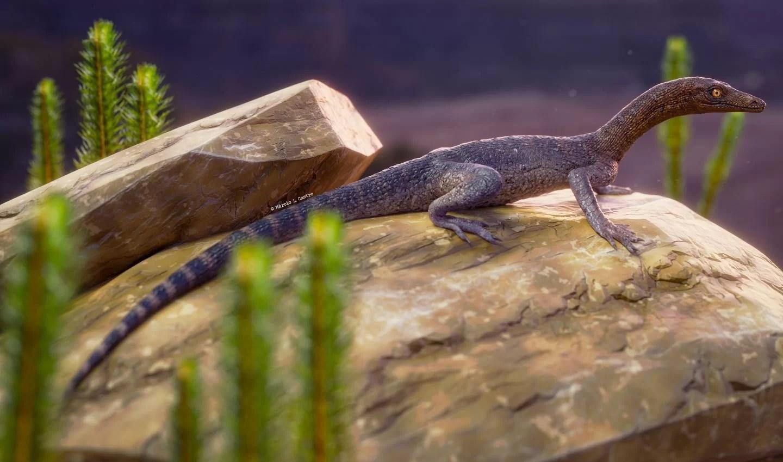 Выяснено происхождение загадочных рептилий