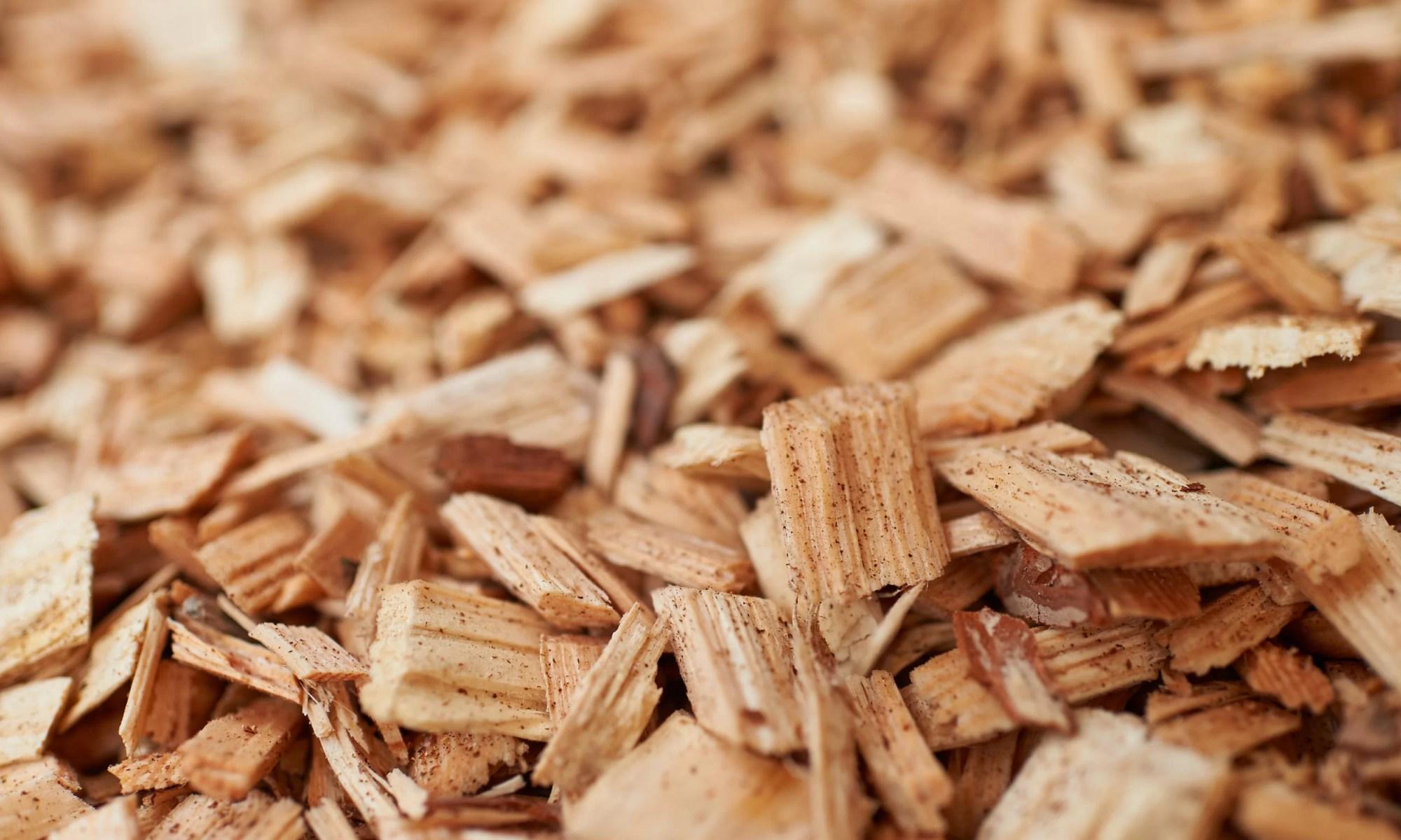 Из древесных щепок получили биотопливо