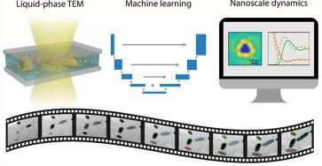 Американские исследователи автоматизировали процесс обработки изображений наночастиц, полученных при помощи жидкофазной просвечивающей электронной микроскопии.