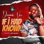 Download Mp3 :-Demmie Vee – If I Had Know