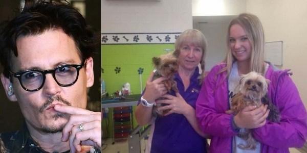 Johnny Depp pode pegar até 10 anos de prisão por polêmica com os cachorros