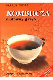 kombucha (kombucza)4 - http://porady.uzdrawianie.org