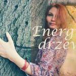 Lecznicza energia drzew