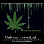 Marihuana i padaczka lekoodporna